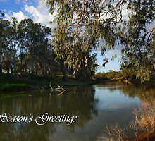 Darling River by Darren Stones