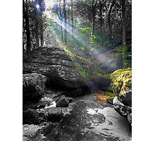 Sun Kissed Photographic Print