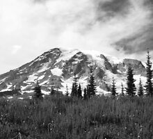 Rainier by jadegreenimage