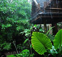 Rainy day Thailand by Greg Birkett