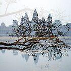 Angkor wat by rkdogz