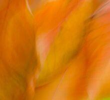 Peachy by Marilyn Cornwell