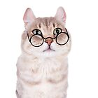 Cat In Glasses by idapix