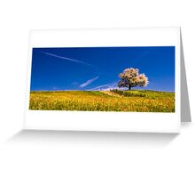 cherry tree in spring Greeting Card