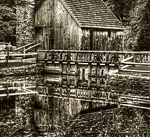 Cabin by the lake - Black & White by Mike  Savad