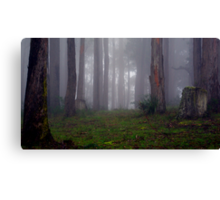 If you go out in the woods today... Canvas Print