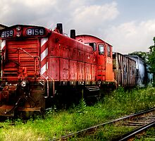 Train 8159 by Mike  Savad