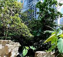 Jungle in the City - Hong Kong. by Tiffany Lenoir