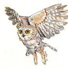 In Flight by Stacey Hatton