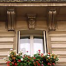 Paris windows by Elena Elisseeva