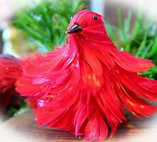 Red Feathers by Cynthia48
