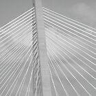 Bridge by randi1972