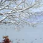 WINTER at the Lake by Ruth Lambert
