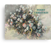 "All Spruced Up ""Merry Christmas"" ~ Greeting Card Canvas Print"