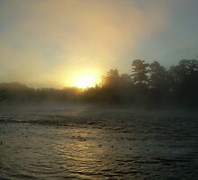 Foggy Sunrise 702 by NiftyGaloot