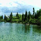 beautiful clear water lake, tree and sky in Grand Teton National Park. by naturematters