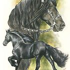 Friesian by BarbBarcikKeith