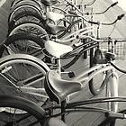 Bikes by AnneRN