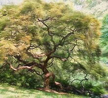 Twisty Tree by Lois  Bryan