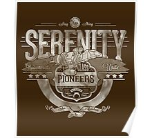 Serenity - Silver Poster