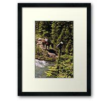 Cowboy and Horse Framed Print