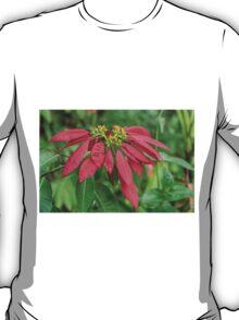 1127 pointsettia T-Shirt