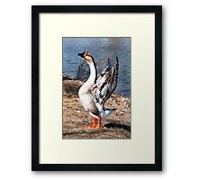 I want to be an eagle! Framed Print