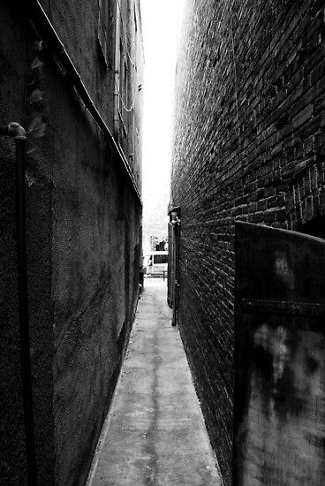 Alley by Gabriel Martinez