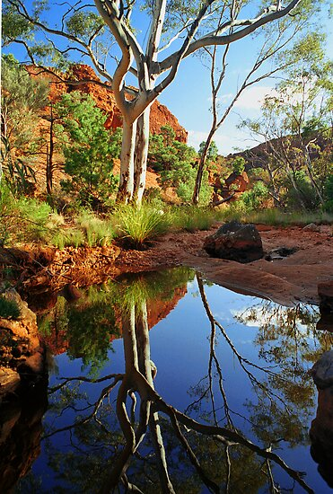 Mootwingee National Park by caroline ellis