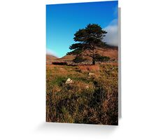 Mournes Glory Greeting Card
