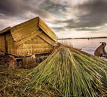 Tropical Straw Hut by thirdiphoto