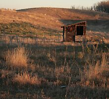Good Morning Prairie by Synevja