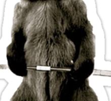 Bear Gains Sticker