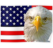 Flag and Eagle 2 Poster