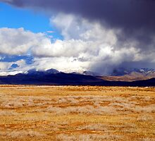 Storms of the Wild West by Carolyn  Farmer