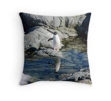 Reflecting Penguin Throw Pillow