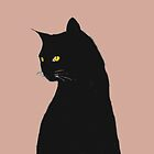 Halloween Special! - Orange eyed witch's cat by bardenne