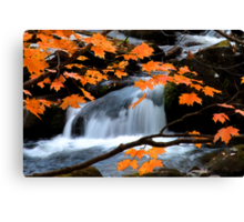 Mountain Splendor  Canvas Print