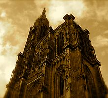 Strasbourg Cathedral - From Below by Pamela Maxwell