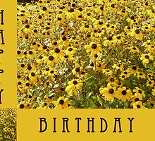 (Birthday Card 1) - Rudbekia - by justlinda