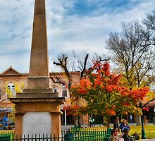 Santa Fe Obelisk a Pigeon and an Accordian Player by Robert Meyers-Lussier