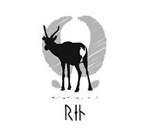 Reindeer with viking runes (white bg, black ink) by l2designs