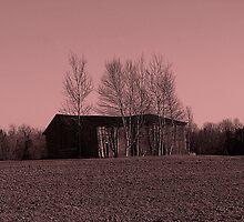 Shed Landscape by Gene Cyr