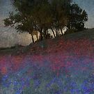 moonrise through the oak by R Christopher  Vest