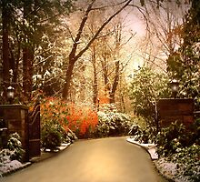 Winter Greets Autumn by Jessica Jenney