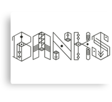 Banks Singer Canvas Print