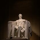 Lincoln by Michelle Jarvie