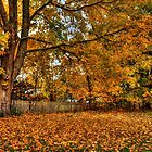 Magical Autumn Tree by Poete100