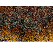Rock Garden  Photographic Print