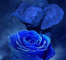 Blue Elephant and Rose by Erika Kaisersot